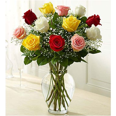 Arranged_Roses_-_Rose_Elegence