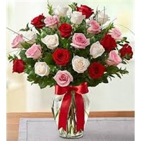 Arranged_roses_-_rose_medley